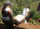 I Vivência Agroecológica - Sítio Vista Alegre